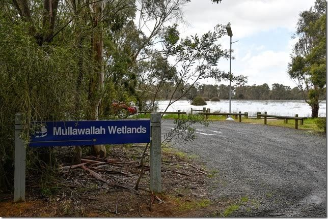 Mullawallah Wetlands Entrance Image by Carol Hall