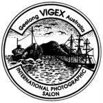 VIGEX