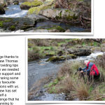 Andrew Thomas Landscape Outing Page 3
