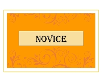 Novice Print  2013 Annual Awards