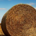 Big Bale (Hugh Lees)