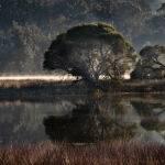 Curalo Lagoon by Trevor Bibby Scored 13