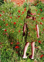 Girl among the Poppies (Roger Lancaster) Merit