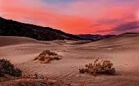 Desert Sunset Peter Kewley Merit