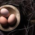 Eggs by Rebecca Nicolandos