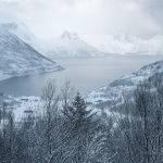 Ersfjord (Carol Hall) 3rd Place