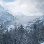 Ersfjord,Norway (Carol Hall) 3rd Place