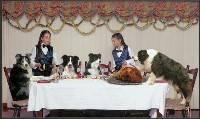 Family Festivities (Bronwen Casey) Merit