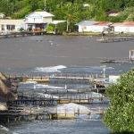 Fishing Huts (Sandie Adaway)