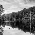 Lake Elizabeth (Betty Bibby)