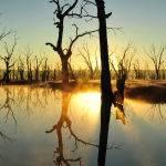Lake Mokoan by Judy McEachern