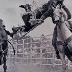 Leap of Faith by Mark Vivian (Reserve Champion Print )
