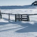 Lonely Barn (Carol Hall)