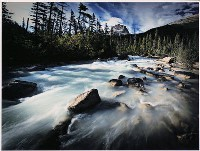 Minor Rapids, Bow River - Peter Dwyer : Merit