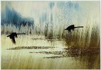Morning Flight (Jan Glover) Merit
