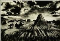 Mungo Terrain - Barry Feldman : Merit