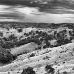 Murchison Gap - Trevor Bibby