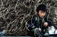 Take a Rest ( Bounmay Chan ) Merit