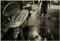 Puddles - Adrian Donoghue : Second in Section