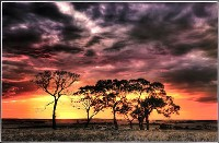 Sunset Vista (Jamie Walhouse) Merit