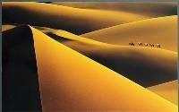 Xinjiang Desert (Man-Quan Peng) Merit