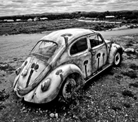 Silverton VW - Highly Commended Betty Bibby