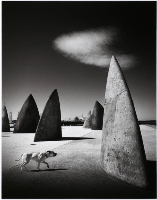 Of Canines & Monoliths (Adrian Donoghue) Merit