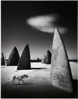 Of Canines & Monoliths (Adrian Donoghue) Merit