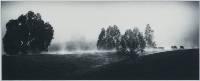 Lonesome Valley Mist (Darren Bennett ) Merit