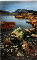 Autumn Shoreline (Robert Morgan) Merit