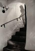 Shadows Descending (Roger Lancaster) 2nd Place