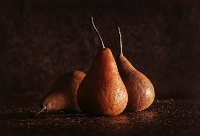 Three Ageing Pears (Janet Rogerson ) Merit